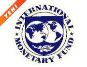 IMF: Teşvik yasası endişelendiriyor