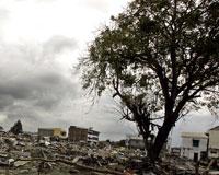 Endonezya 5.9'luk deprem